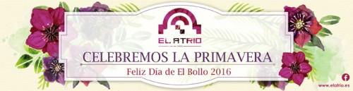 El Bollo 2016
